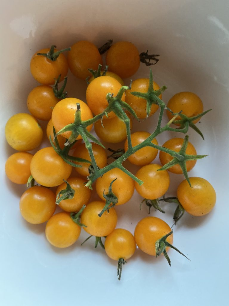 a bowl of orange cherry tomatoes