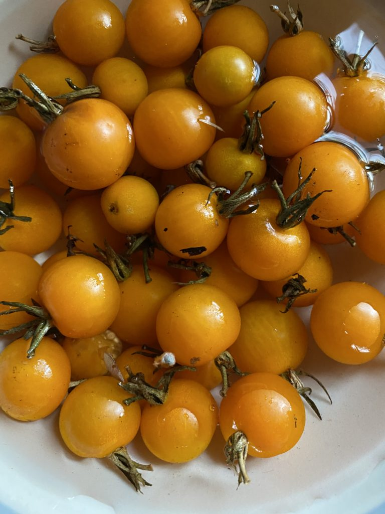 golden cherry tomatoes